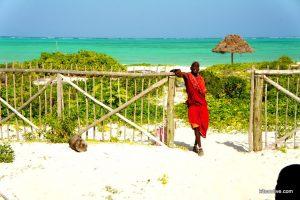Kitesurfreis Zanzibar5